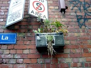La Pok's guerilla gardening Melbourne