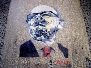 Calm - Murdoch Swine