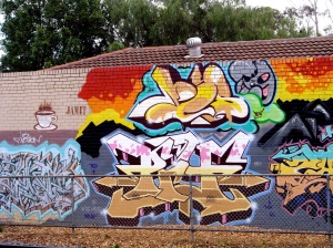 Oldest wall in Brunswick 2
