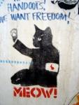 meow-irene-warehouse