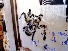 spider-stencil